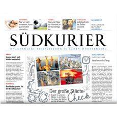 Zeitungsbericht über Allensbacher Sommer-Qigong