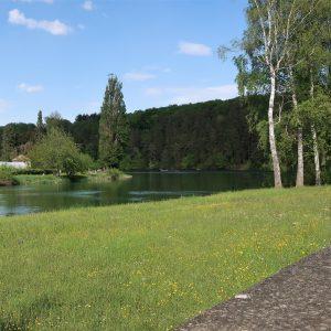 Rheinau 2